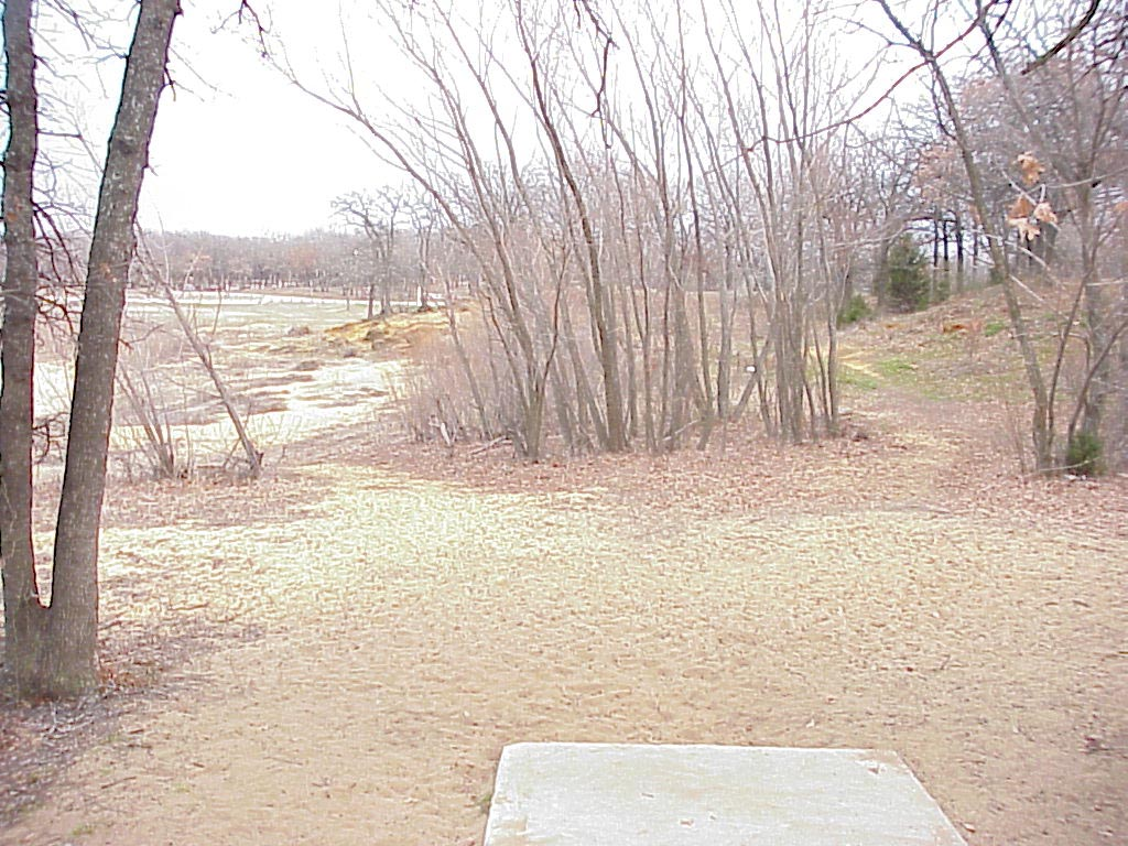 lake park hole 3.jpg (202975 bytes)